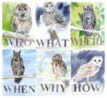 jenny robins - amelia's magazine - windsor2 - owls