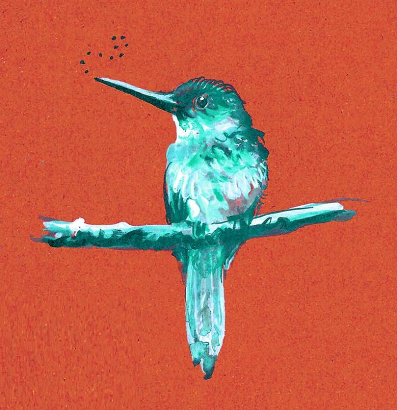 jenny robins - bird - jacamar red and blue