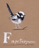 jenny robins - F is for fairywren