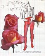 jenny robins illustration sketchbook