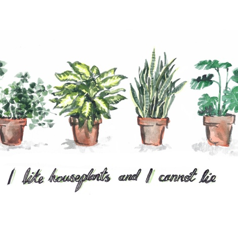 jenny robins - I like houseplants and I cannot lie small
