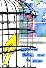 jenny robins - what birds are really thinking - canary - weather